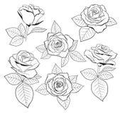 De vectorreeks van gedetailleerd, geïsoleerd overzicht nam knopschetsen met bladeren in zwarte kleur toe Vector illustratie voor  Stock Afbeelding