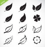 De vectorreeks van het bladerenpictogram Stock Fotografie