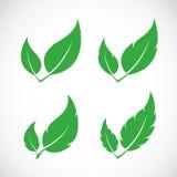 De vectorreeks van het bladerenpictogram Stock Foto