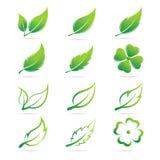 De vectorreeks van het bladerenpictogram Royalty-vrije Stock Foto's