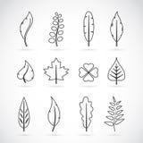 De vectorreeks van het bladerenpictogram Royalty-vrije Stock Foto