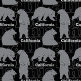De vectorreis Californië draagt Naadloos Patroon met grijze, en beren die op zwarte achtergrond opstaan lopen zitten Stock Afbeeldingen