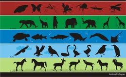 De vectorsamenstelling van dieren Stock Foto