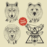 De vectorschets van wilde dierlijke hoofden draagt, wolf, leeuw, herten in hipsterstijl Stock Fotografie