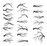 De vectortakken van de reeks droge boom Stock Foto