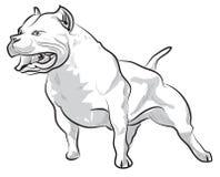 De vectortekening die van de schetshand pitbull ontschorsen Vector Illustratie