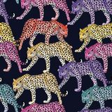 De veelkleurige naadloze donkerblauwe achtergrond van het luipaardpatroon Royalty-vrije Stock Afbeeldingen
