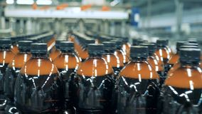 De veelvoudige plastic flessen bier bewegen zich langs de transportband stock footage