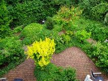 De vegetatie en de wegen van Wonderfullolsberg Stock Afbeelding