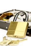 De Veiligheid van gegevens Stock Foto