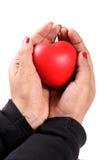 De veiligheid van het hart Stock Foto