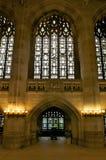 De vensters van de bibliotheek Royalty-vrije Stock Afbeelding