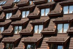 De vensters van het dak Stock Afbeeldingen
