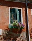De Vensters van Venetië met Bloemen stock foto