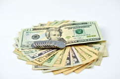 De ventilator van het geldcontante geld Stock Afbeelding