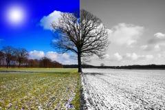De verandering van het seizoen Stock Foto's