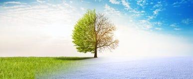 De verandering van de de lentewinter royalty-vrije illustratie