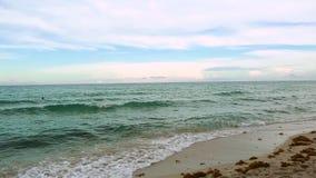 De verbazende horizon van de schoonheidsatlantische oceaan en blauwe hemel Het strand van Miami stock footage