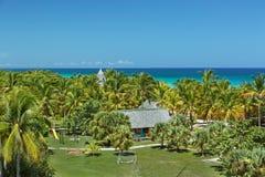de verbazende mening van tropische palmen tuiniert tegen rustige oceaan en blauwe hemelachtergrond Stock Afbeeldingen