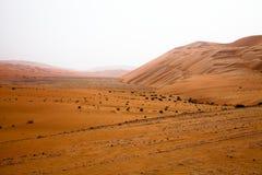 De verbazende vormingen van het zandduin in Liwa-oase, Verenigde Arabische Emiraten royalty-vrije stock fotografie