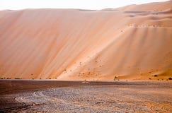 De verbazende vormingen van het zandduin in Liwa-oase, Verenigde Arabische Emiraten royalty-vrije stock afbeeldingen
