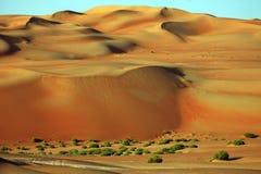 De verbazende vormingen van het zandduin in Liwa-oase, Verenigde Arabische Emiraten stock afbeeldingen