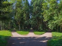 De verbinding, drie boswegen komt in samen stock afbeeldingen
