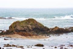 De verbindingen verzamelen zich bij de basis van een intertidal rots stock foto