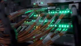 De Verbindingshub van het Ethernetnetwerk Het knipperen lichten in een donkere die serverruimte, Close-upmening van Ethernet-kabe stock video
