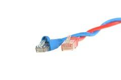 De verdraaide kabels van het computervoorzien van een netwerk Stock Foto's