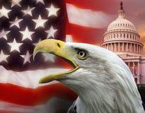 De Verenigde Staten van Amerika - Washington DC Stock Foto's