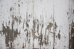 De verf van de schil Stock Fotografie