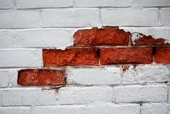 De verf van de schil op muur Royalty-vrije Stock Fotografie