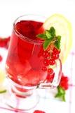 De verfrissende thee van het de zomerijs Stock Foto