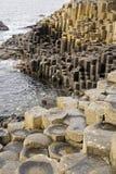 De Verhoogde weg van de reus in Noord-Ierland stock afbeeldingen