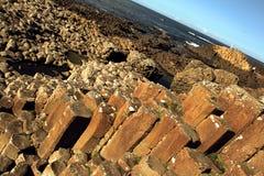 De verhoogde weg van de reus van Noord-Ierland Stock Afbeelding