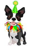 De Verjaardag van Boston Terrier royalty-vrije illustratie