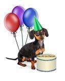 De Verjaardagspartij van het tekkelpuppy Stock Fotografie