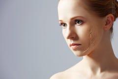 De verjonging van het schoonheidsconcept, vernieuwing, huidzorg, huidproblemen royalty-vrije stock afbeelding