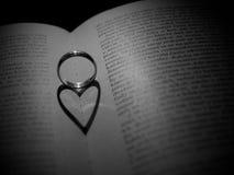 De verklaring van de liefde Stock Foto