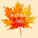 De VERKOOP van de herfst De VERKOOP van Word van rode de herfstbladeren Stock Foto's