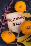 De VERKOOP van de herfst De VERKOOP van Word van rode de herfstbladeren royalty-vrije stock afbeeldingen