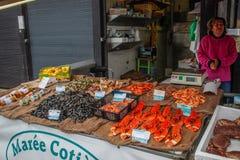De verkoop van overzees voedsel langs de kust van de Keltische Zee De markt van het ochtend overzeese voedsel met zeekreeft, garn stock fotografie