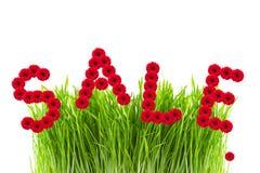 De verkoop van Word die van gerber, groen gras wordt gemaakt Royalty-vrije Stock Foto's