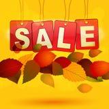 De verkoopmarkeringen met de herfst doorbladert Stock Foto
