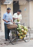 De verkopende kokosnoten van de straatverkoper, India Royalty-vrije Stock Fotografie