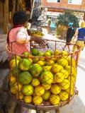 De verkoper van sinaasappelen draagt haar goederen in een reusachtige rode mand Royalty-vrije Stock Fotografie