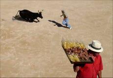 Verkoper aan stierenvechten Stock Foto's