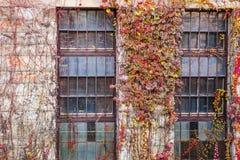 De verlaten Industriële Bouw stock afbeelding