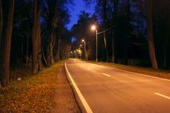 De verlaten lege weg in het hout bij nacht. Stock Foto's